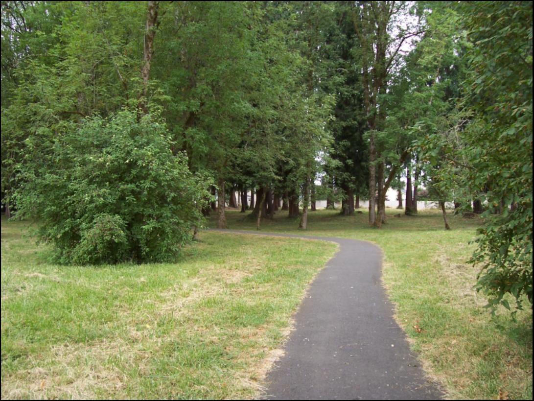 Cedar Trails pathway
