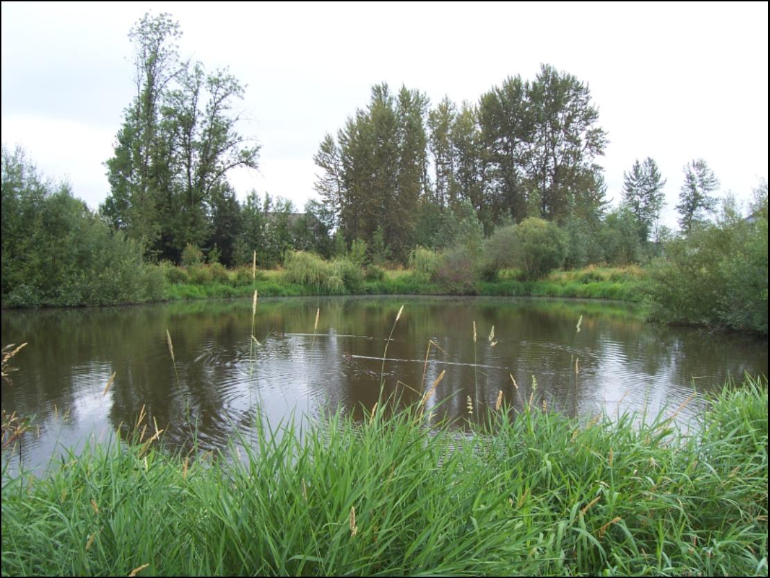 Florence Robison North Pond
