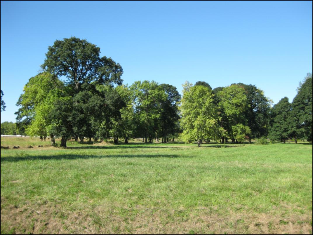 Gardner Oaks Field