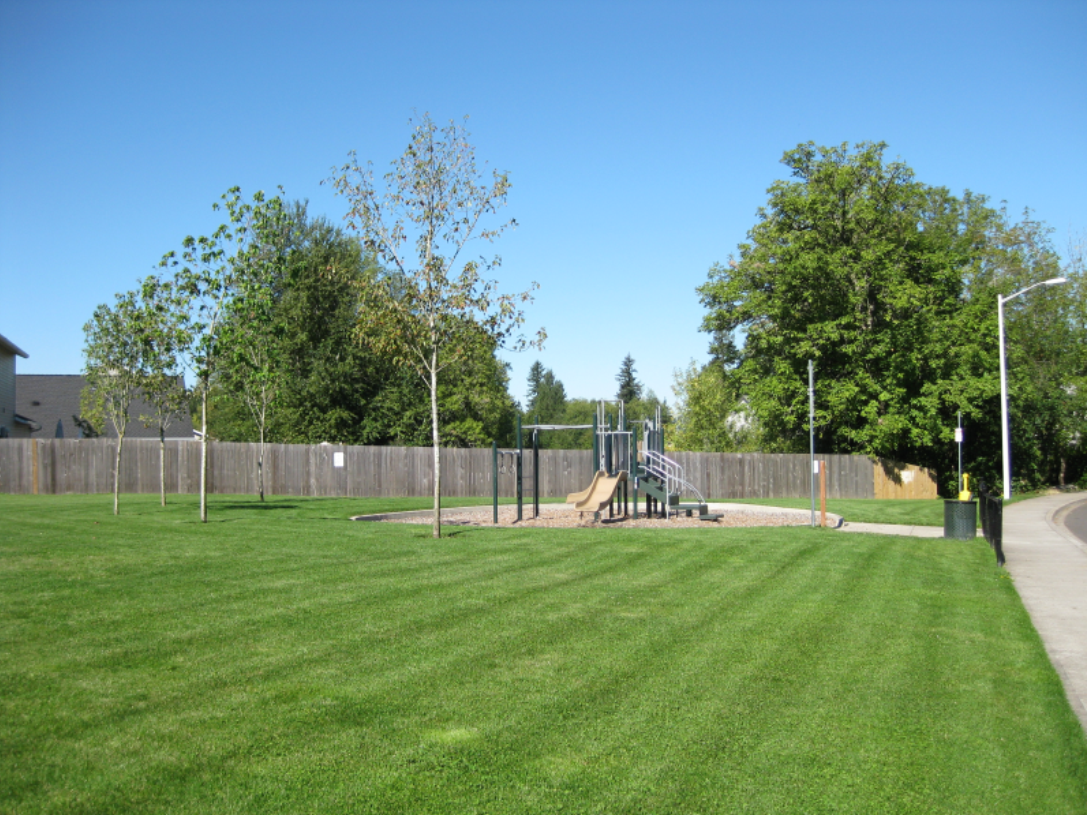 Horse Thief Play Equipment and Field